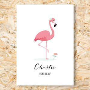 Flamingo geboortekaartje