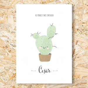 Cactus geboortekaartje